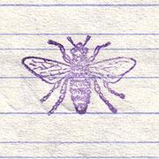 Bienchen, Schreibheft, Bienchenstempel, Original, Abdruck, DDR, Fleißkärtchen, Grundschule, ostdeutsch