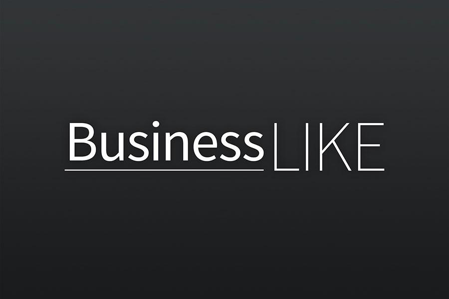 Logo, Corporate Design, Grafikdesign, Fotodesign, BusinessLike, Erfurt, Jena, Thüringen
